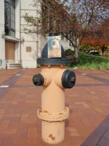 Benji at Fire Hydrant